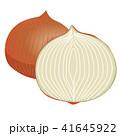 野菜 食材 農作物のイラスト 41645922