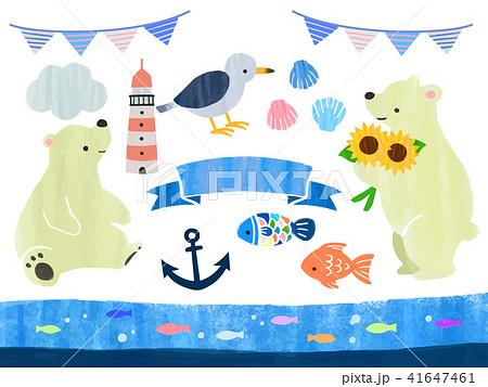 白クマと夏のイラスト 41647461