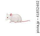 げっ歯類 ネズミ目 齧歯目のイラスト 41652402
