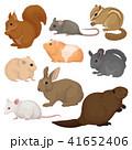 げっ歯類 ネズミ目 齧歯目のイラスト 41652406