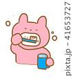 歯磨きするウサギ 41653727
