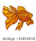 サカナ 魚 魚類のイラスト 41654618