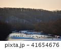 タンチョウ 丹頂鶴 雪裡川の写真 41654676