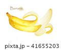 バナナ 背景 ホワイトのイラスト 41655203