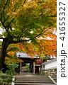 円覚寺 正続院 鎌倉の写真 41655327