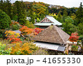 円覚寺 寺 鎌倉の写真 41655330
