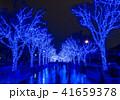 クリスマス 冬 日本の写真 41659378