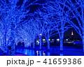クリスマス 冬 日本の写真 41659386