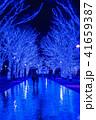 クリスマス 冬 日本の写真 41659387