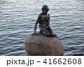 人魚 41662608
