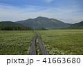 尾瀬 尾瀬ヶ原 湿原の写真 41663680