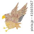 鷹(鷲) 41665067