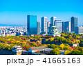 秋の大阪城と超高層ビル 41665163