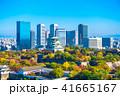 秋の大阪城と超高層ビル 41665167