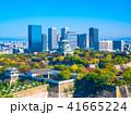 秋の大阪城と超高層ビル 41665224