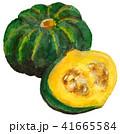 かぼちゃ 水彩 水彩画のイラスト 41665584
