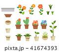 植物 41674393