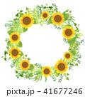 リース フレーム 向日葵のイラスト 41677246