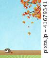 縁側で丸くなる猫 秋(和紙テクスチャー) 41679341