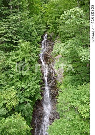 都民の森の三頭大滝 41680808