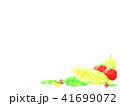 野菜 夏野菜 水彩風のイラスト 41699072