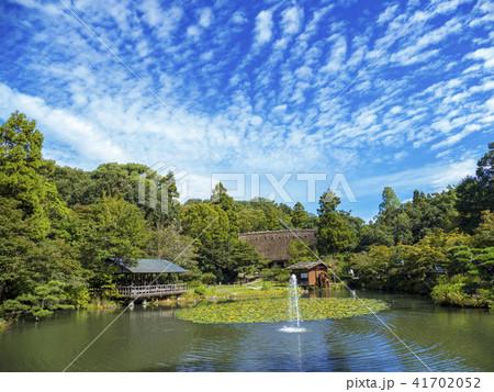 秋の東山動植物園 41702052