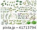葉っぱ 素材 水彩のイラスト 41713794