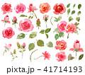 薔薇 花 葉っぱのイラスト 41714193