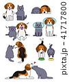 犬と猫のペア、しぐさセット3 41717800