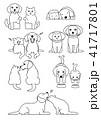 犬と猫のペア、しぐさセット3 41717801
