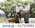 野菜 収穫  41724084