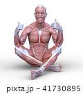 男性人体模型 41730895