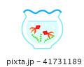 金魚 41731189