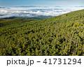 北八ヶ岳・縞枯山展望台から見る中央アルプスと御嶽 41731294