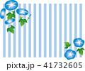 朝顔 花 夏のイラスト 41732605