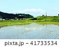 青空と田んぼ 41733534