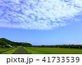 空と道 41733539