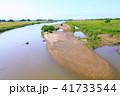 雄物川の中洲 41733544