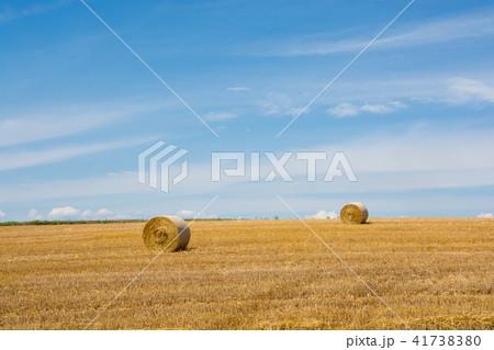 刈り取りが終わったムギ畑とムギロール 41738380