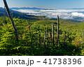 山 雲海 南アルプスの写真 41738396