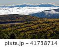 北八ヶ岳・三ツ岳の登りから見る雨池と雲海に浮かぶ奥秩父の山並み 41738714