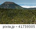 北八ヶ岳・北横岳から見る蓼科山と北アルプス・後立山の眺め 41739305