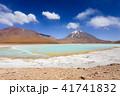 ボリビア ラグーナ・ベルデ 緑の写真 41741832