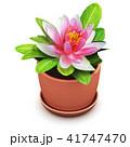 お花 フラワー 咲く花のイラスト 41747470