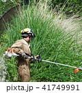 草刈り作業 41749991