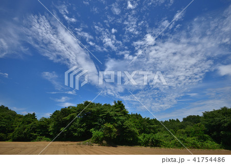 夏空 梅雨明けの青空と白い雲の...