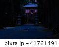 ヒメボタル 乱舞 光の写真 41761491