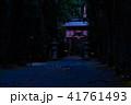 ヒメボタル 乱舞 光の写真 41761493
