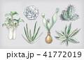 多肉植物イラスト 一覧 41772019