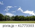公園 芝生 広場の写真 41773303